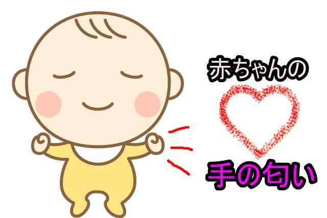 赤ちゃんの手の匂い